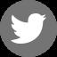 OttO Vector Twitter